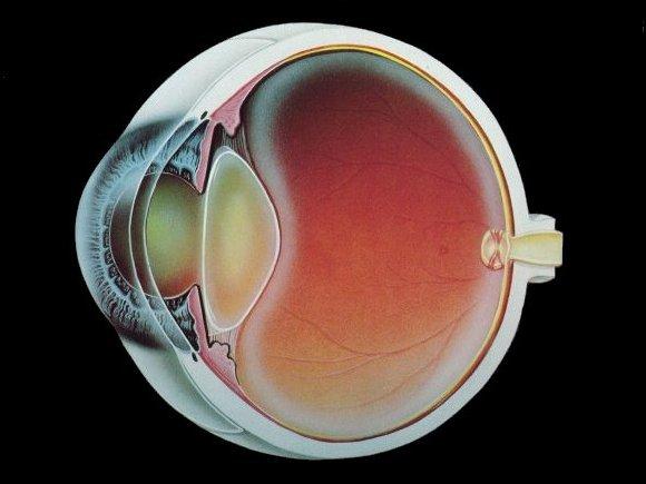 Упражнение для глаз чтобы улучшить зрение
